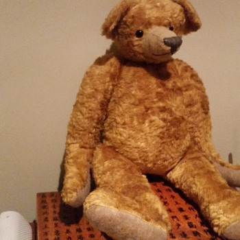Does anyone know more about this old teddy bear?