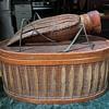 Giant Grasshopper Basket