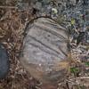 Native American abrading stone artwork