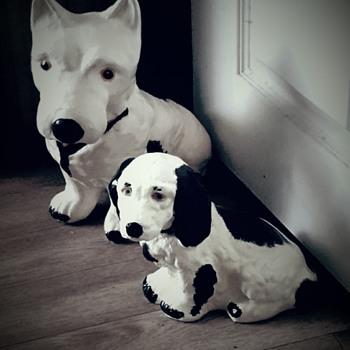 My 2 dogs - Animals