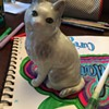 White Cat figure made in Japan