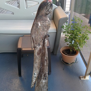 LARGE CARVED DRIFTWOOD PARROTT PAINT FADED - Folk Art