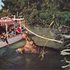 Vintage Disneyland Postcards The Jungle Boat Cruise and Mark Twain