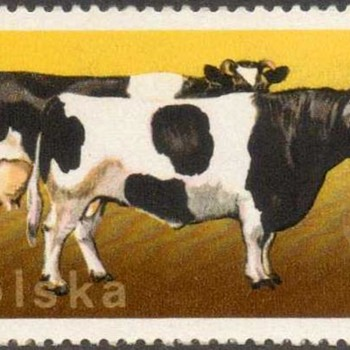 "Poland - ""Cows & Cattle"" Postage Stamps - Stamps"