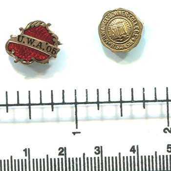 University of Wisconsin Gold Pins - Medals Pins and Badges