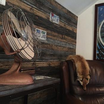 My awesome Aeros fan.