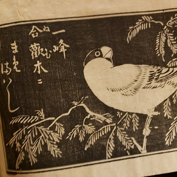 Antique rice paper book? - Books