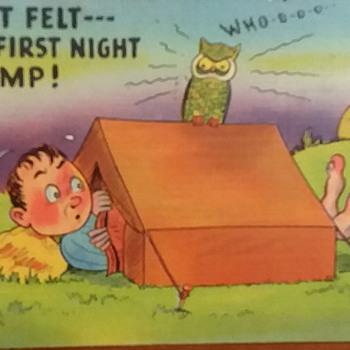 Camp Wheeler GA 1942 - Postcards