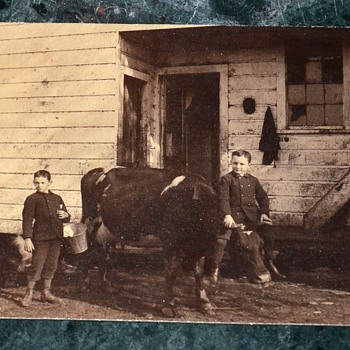 Cool photo i bought on ebay - Boy riding a cow