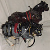 Horses how old?