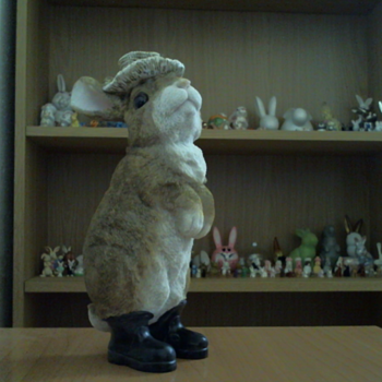 Two cute bunnys on my collection - Animals