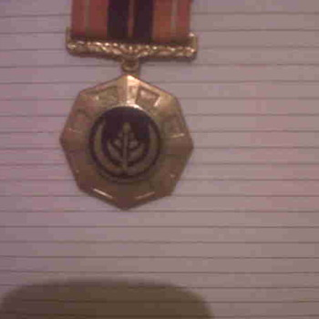 Military Badge...South African? - Medals Pins and Badges