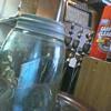 blue ball mason quart jar