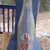"""Vintage Dr. Pepper 6 oz bottle with """"safe driving"""" printed on back"""
