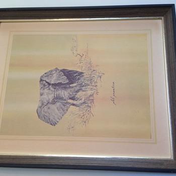 Phil Prentice Elephant print - Fine Art