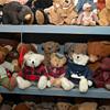 where do I begin? Stuffed bear collection