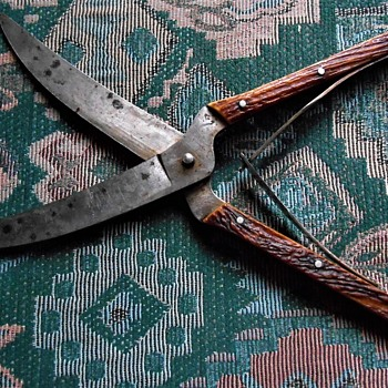 Antique Henckels game shears with stag handles - Sewing