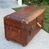 Alligator Covered Portfolio Trunk #2