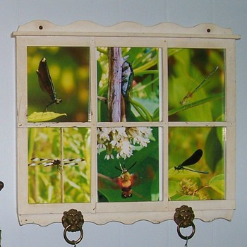 Old frame with brass lion drawer pulls and some nature oddities