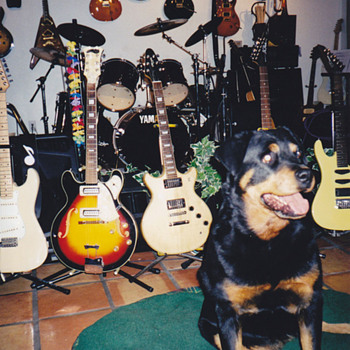 PRS Rocks!  - Guitars