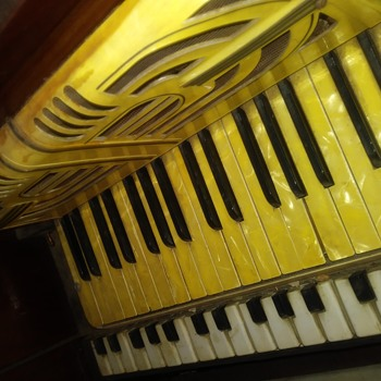 solovox marries a hohner Verdi 1 - Musical Instruments