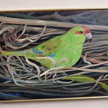 Red Crown Parakeet by Randall Wood - Fine Art