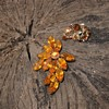Pretty amber rhinestone pin and single earring.