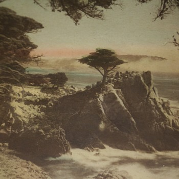 Old Framed Scenic Photo of Point Lobos, Carmel, CA - Photographs