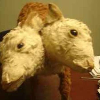 My Double Headed Calf....Bipolar Betty