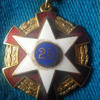 25 pin  - Medals Pins and Badges