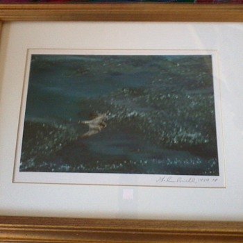 Galen Rowell Photograph, Artist Proof, signed, dated, of Peregrine Falcon - Photographs