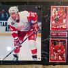 Detroit Red Wings - Hockey!!