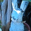The ghostly rabbit (pottery statue)