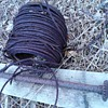horse barn wire/cable