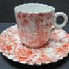 Pre Shelley Wileman Cup and Saucer - rd 117220 - Jungle Sheet