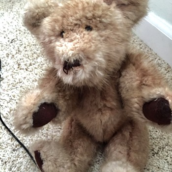 Old Bear Made Of Mink