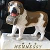 Hennessy St. Bernard
