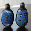 Pair of Cloisonne Flowers and Butterfly Snuff Bottles