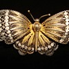 Early 19th Century Filigreed Gilt Silver Butterfly