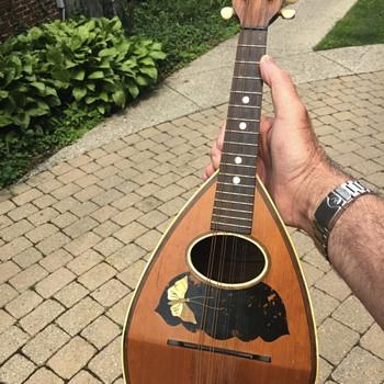 Melonbacked mandolin - Musical Instruments