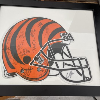 Cincinnati bengals Team autographed banner  - Football