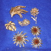 Mixed Gold Brooch Lot Sarah Coventry set