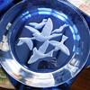Birds in Flight glass plate