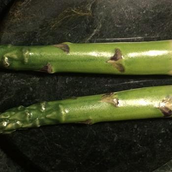 Majolica Asparagus Salt and Pepper Shakers?