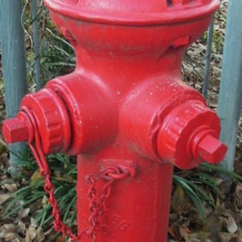 1895 Corey Fire Hydrant
