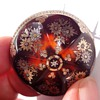 Tortoise Elaborated Domed Piqué  Brooch and Locket