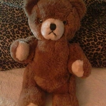 Help What kind of Teddy Bear is This