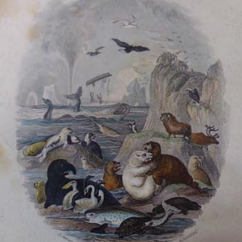 C. 1859 Chromo-lithographs  - Books