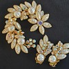 Beau Jewels Brooch & Earrings