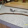 "old 12""wood +brass ruler"